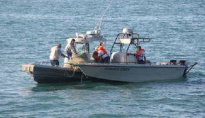 Monitorea UNESCO Patrimonio Mundial Islas y ANP del Golfo de California