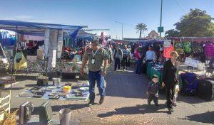 Refuerza PROFEPA operativos contra el tráfico y comercio de vida silvestre en Baja California