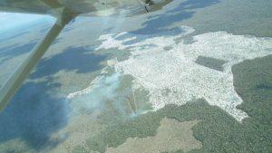 Detectan incendio en área deforestada de Iturbide, Hopelchén, Campeche