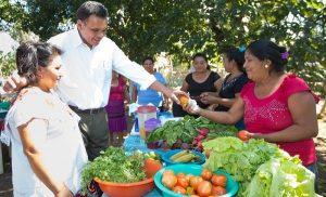 Familias yucatecas prosperan con sus Huertos de Traspatio