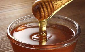 Crece producción de miel orgánica en Campeche