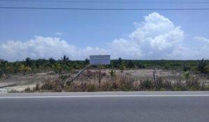 Clausura PROFEPA predio por cambio de uso de suelo y sin autorización en Telchac Puerto, Yucatán