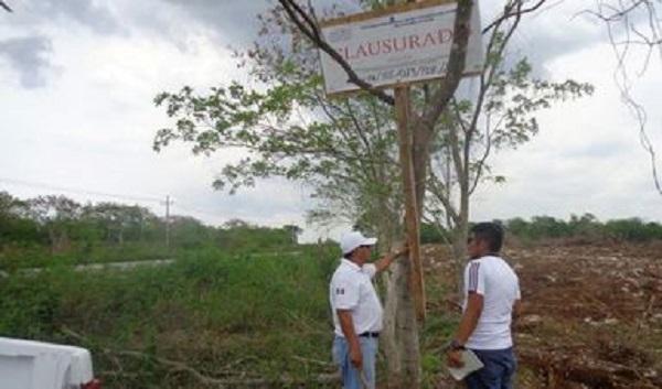 2a79e4cc95 Se realizó el cambio de uso de suelo en terrenos forestales sin  autorización de SEMARNAT afectándose una superficie de 5.4 hectáreas  afectando ecosistema de ...