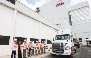Yucatán, a la vanguardia en la producción de carne de cerdo