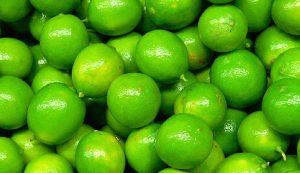 Limón mexicano, único en el mundo
