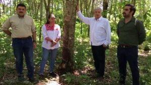 La Sedesol cambiara de nombre, será Secretaría de Bienestar: AMLO