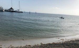 Limpieza de playas en Cancún es permanente
