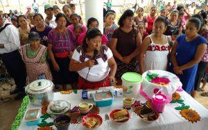 """Realiza CDI Campeche encuentro cultural """"Chapin es mi raíz"""""""