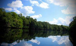 Realizarán foro ciudadano sobre la veda en cuencas hidrológicas
