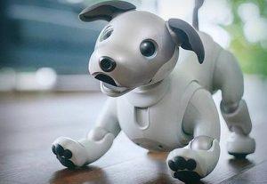 Anuncia Sony su perro robot