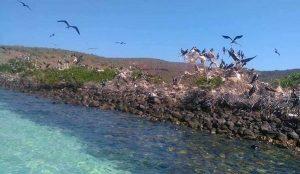 Política ambiental para el cuidado de los mares