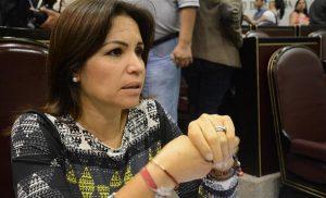 Próxima Cámara en Veracruz deberá legislar sobre matrimonio igualitario: Mónica Robles