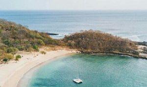 Ecosistemas costeros, los que más carbono secuestran