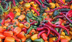 Las 64 variedades de chile en México