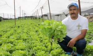 Apoyo a pequeños productores, un logro muy grande para el campo