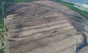 ASEA deberá emitir medidas por construcción de refinería en Tabasco: PROFEPA