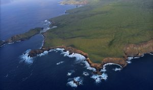 Parque Nacional Revillagigedo ha quedado resguardado a perpetuidad