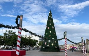 Este vienes gobierno de Campeche encenderán árbol navideño
