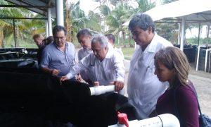 UJAT a la vanguardia en acuicultura: Villegas Arreola