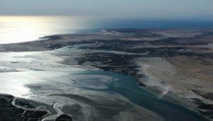 Contaminación del Golfo de México afecta importantes ecosistemas, alerta investigador