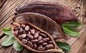 Cacao: la moneda más valiosa del mundo