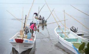 Sector pesquero necesita programas, no censos en Campeche