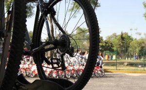 Emite Greenpeace México 10 consejos de viajar en bicicleta por el mundo