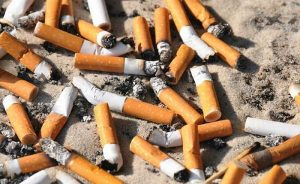 Filtros de cigarros afectan al medioambiente