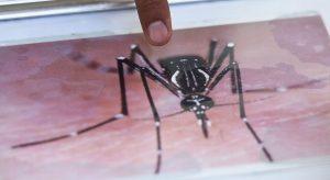 Xalapa es foco rojo en dengue: IMSS Veracruz