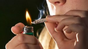 UNAM estudiará cerebro de consumidores de marihuana