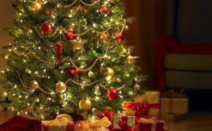 ¿Sabes cuándo se el árbol de Navidad?