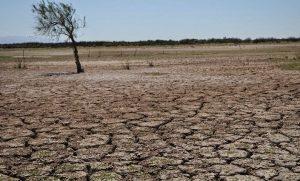"""""""Detengamos la erosión del suelo, salvemos nuestro futuro"""""""