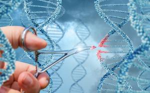 La biotecnología revoluciona la medicina estética