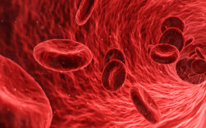 Nanotecnología detecta virus del dengue en torrente sanguíneo