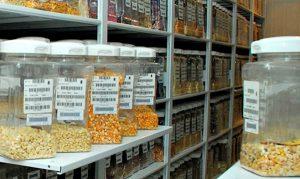 La certificación y autosuficiencia alimentaria van de la mano