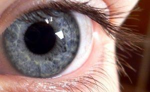 Expertos estudian células madre para regenerar retina