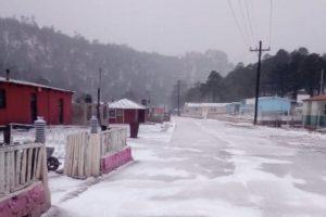 Cinco municipios son afectados por intensas nevadas en Durango