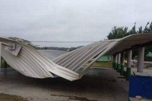 Dos domos y 29 árboles caídos, saldo preliminar de afectaciones por evento de norte en estado de Veracruz
