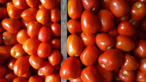 Se dispara precio del jitomate en Veracruz; llega casi a 50 pesos el kilo