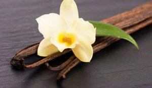 Vainilla, mágico aroma, poderoso sabor