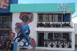 """Abren al público el restaurante """"Cabos and Fish"""" en Boca del Río"""