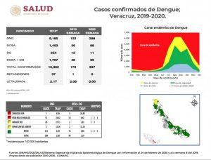 Poza Rica y Pánuco en foco rojo por dengue: Boletín Epidemiológico
