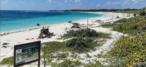 Anuncian cierre de Áreas Naturales Protegidas de Quintana Roo para evitar propagación de Covid-19