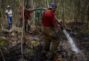 Supervisa Laura y combate a incendio forestal en la ruta de los Cenotes