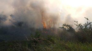 Incendio junto a puerto seco se originó por quema de basura en Veracruz