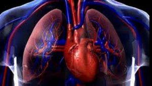 ¿Qué es la angina de pecho?
