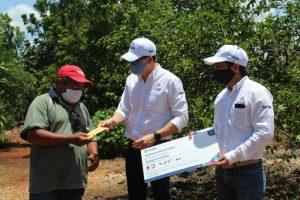 Productores yucatecos de cítricos de 11 municipios reciben apoyos económicos del Gobierno del Estado ante la contingencia por el Coronavirus