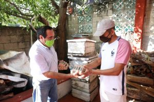 Apicultores yucatecos son respaldados por el Gobierno del Estado para impulsar la producción de miel