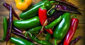 Variedades de chile verde en México