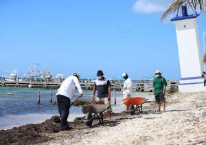 Atiende Gobierno de Laura Fernández arribó de zarpazo a Puerto Morelos